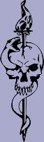 Skull 81 Decal