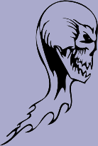Skull 79 Decal