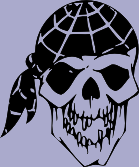 Bandana Skull 73 Decal
