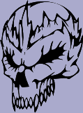 Skull 65 Decal