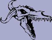 Skull 63 Decal
