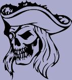 Skull 60 Decal