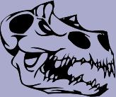 Skull 54 Decal
