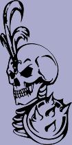 Skull 49 Decal