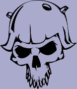 Skull 46 Decal
