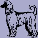 Dog Breed Decal - Afghan Hound