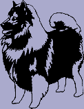 Dog Breed Decal - Keeshond