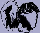 Dog Breed Decal - Peking