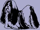 Dog Breed Decal - Shih Tzu (Shih Tsu)