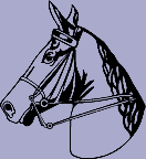 Horse Head Decal 15