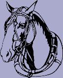 Horse Head Decal 16