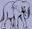 Wild Animal Decal 8 - Elephant