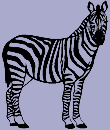 Wild Animal Decal 20 - Zebra